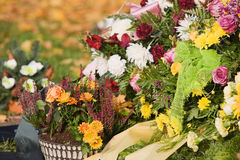 Flowers on Grave Stock Photos