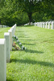 Flowers at gravesite Stock Photography