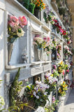 Flowers on graveyard tombstones Stock Photography
