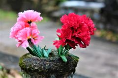 Flowers In A Graveyard. Vibrant flowers in a graveyard at dusk Royalty Free Stock Images