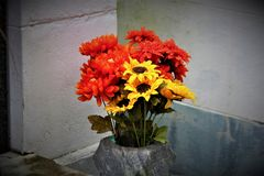 Flowers In A Graveyard. Vibrant flowers in a graveyard at dusk Royalty Free Stock Photo