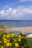 Flowers in green grass against the blue sky, Mediterranean Sea background, boat on the beach of Bat Galim, Israel Stock Images