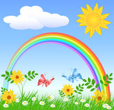 Flowers with green grass and rainbow. Meadow flowers, rainbow, sun and blue sky Stock Photography