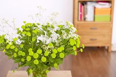 Flowers green houses in the living room stock images