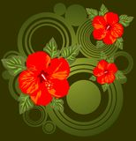 Flowers and green pattern Stock Photography