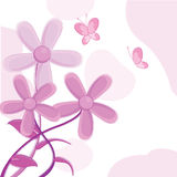 Flowers greeting card Stock Photography