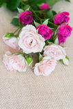 Flowers greeting card royalty free stock image