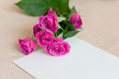 Flowers greeting card royalty free stock images