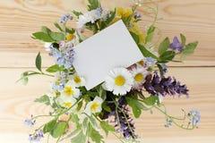 Flowers greeting invitation Stock Photos