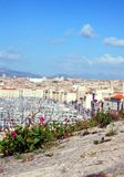 Flowers Grow Above the City of Marseille Royalty Free Stock Photos