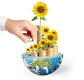 Flowers growing from a money,Some components of this image are p Stock Photography