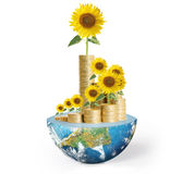 Flowers growing from a money,Some components of this image are p Royalty Free Stock Photo