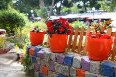 Flowers growing in orange flowerpots near a wooden fence on a multi-colored stone wall Royalty Free Stock Photos