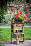 Flowers growing on plastic boxes. Red and white flowers growing in a pot on plastic boxes Stock Image