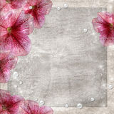 Flowers grunge background Stock Images