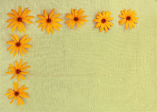 Flowers on a gunny cloth Royalty Free Stock Photo