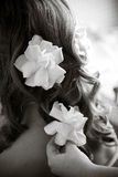Flowers in hair Royalty Free Stock Image