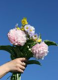 Flowers in a hand. On a background of the dark blue sky Stock Images