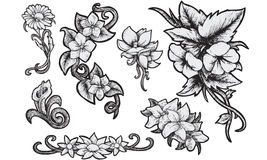 Flowers - Hand Drawn Royalty Free Stock Photo