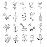 20 flowers hand drawn set vector. 20 flowers black hand drawn set vector royalty free illustration