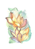 Flowers. Hand drawn watercolor illustration of flowers Royalty Free Stock Photos