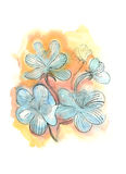 Flowers. Hand drawn watercolor illustration of flowers Royalty Free Stock Photo