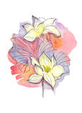 Flowers. Hand drawn watercolor illustration of flowers Stock Photo