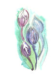 Flowers. Hand drawn watercolor illustration of flowers Stock Image