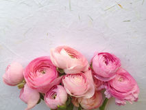 Flowers on handmade paper Stock Images