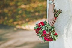 Flowers in hands of the girl 2330. Royalty Free Stock Photos