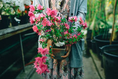 Flowers in hands Royalty Free Stock Photo