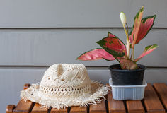 Flowers and hat Royalty Free Stock Image