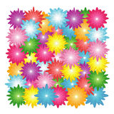 Flowers head background Stock Image