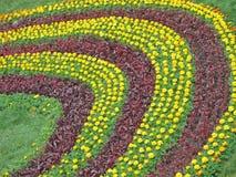 Flowers heap diversity, nature curves concept, Royalty Free Stock Photos