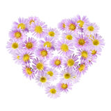 Flowers heart. Isolated on white background Royalty Free Stock Photos
