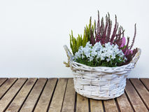 Flowers and heather in basket Stock Photo