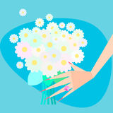 Flowers in her hand. Female hand with camomile. Vector-Illustration Royalty Free Stock Images