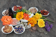Flowers and Herbs for Natural Healing stock images