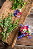 Flowers and herbs and old bark Stock Images