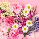 Flowers and Herbs of Summer stock photo