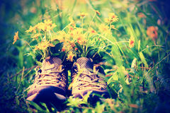 Flowers and hiking boots on grass Stock Image