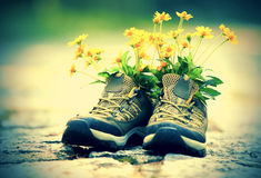 Flowers and hiking boots on trail Stock Photography