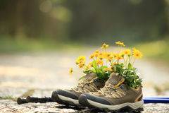 Flowers and hiking boots on trail royalty free stock photos