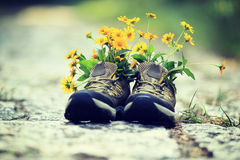 Flowers and hiking boots on trail royalty free stock images