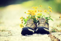 Flowers and hiking boots on trail royalty free stock photography