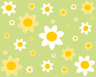 Flowers hippie background Stock Images