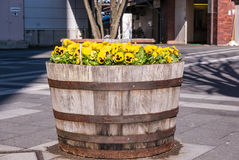 Flowers at Hirosaki Station Royalty Free Stock Images