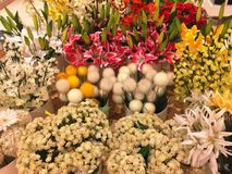 Flowers for Home Decoration Royalty Free Stock Images