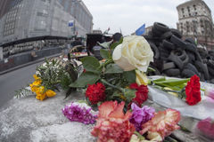 Flowers in honer of heroes killed on barricades in Kiev. Stock Images