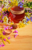 Flowers with honey Royalty Free Stock Image